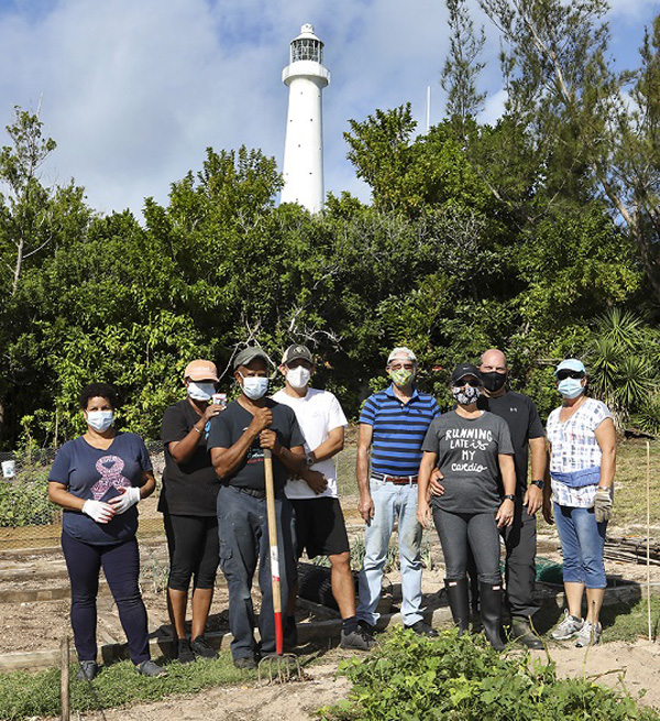 Community Gardens Bermuda Nov 2020 (12)