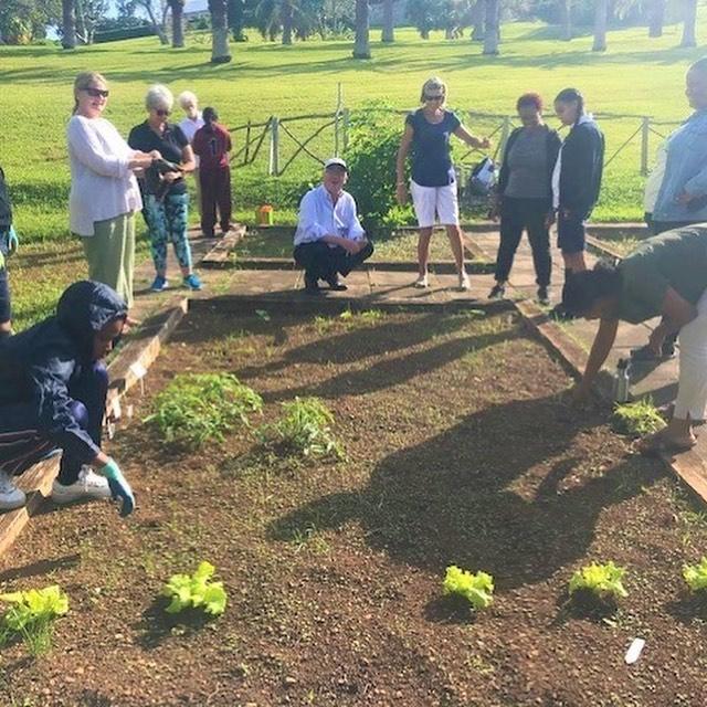 School Gardens Programme Bermuda November 2020 2