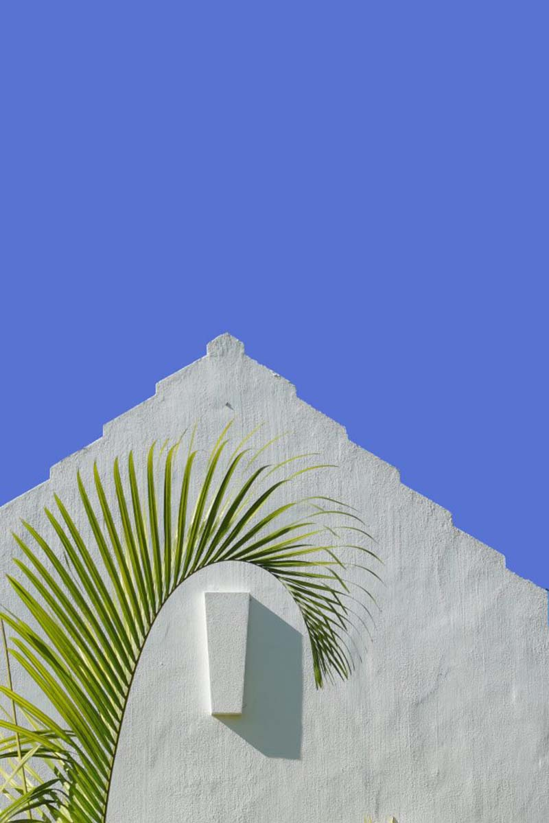 Dr Reg Grundy Youth Photography Bermuda Dec 2020 17