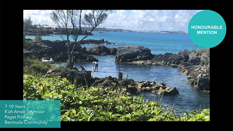 Grundy Youth Photo Contest 7-10 Years Old Bermuda Dec 2020 5