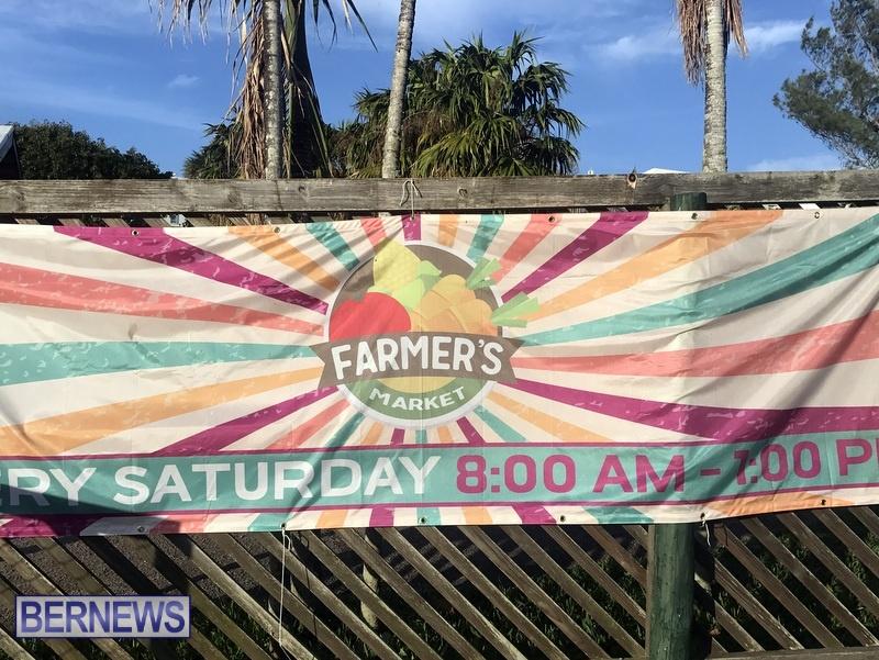 2020 Bermuda Farmers Market at Botanical Gardens Jan 4 (1)