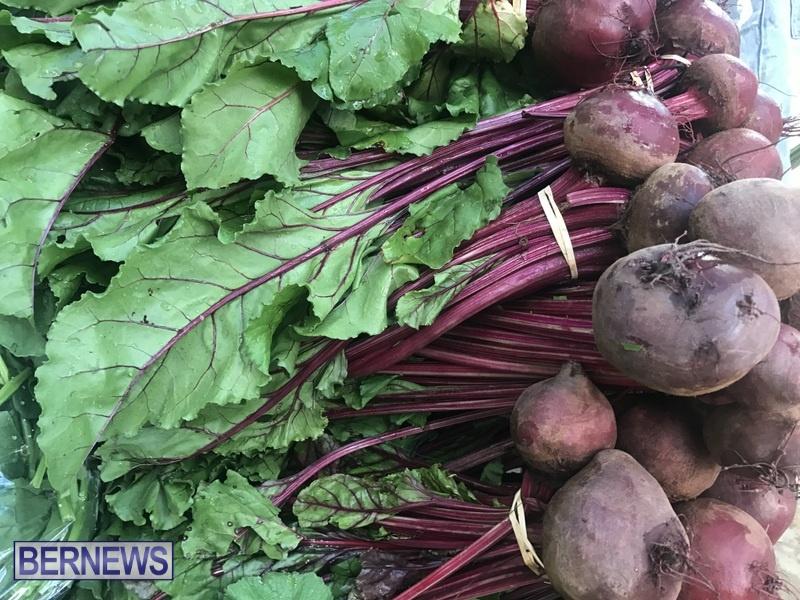 2020 Bermuda Farmers Market at Botanical Gardens Jan 4 (18)