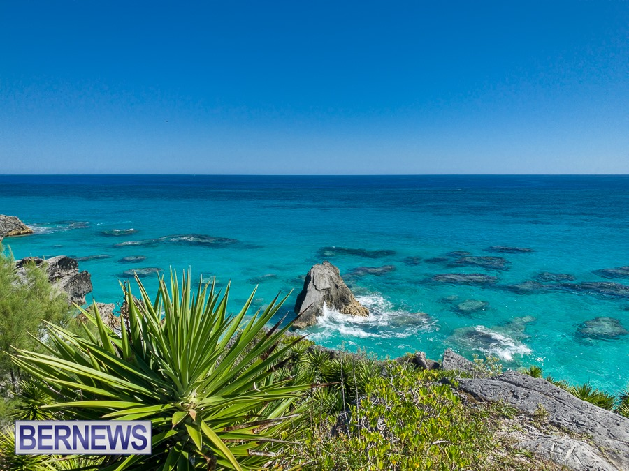 250 - Gorgeous greens and blues on around Bermuda's shores