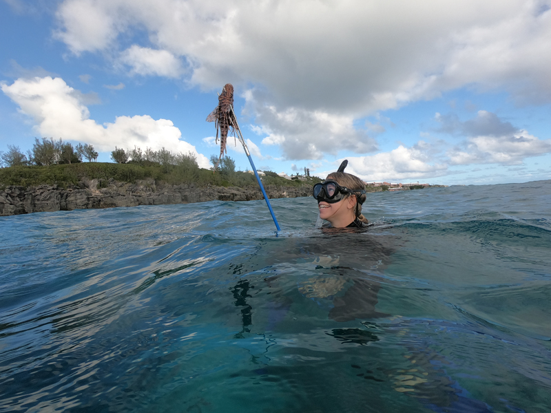 November 2020 Bermuda Lionfish Grand Prix (1)