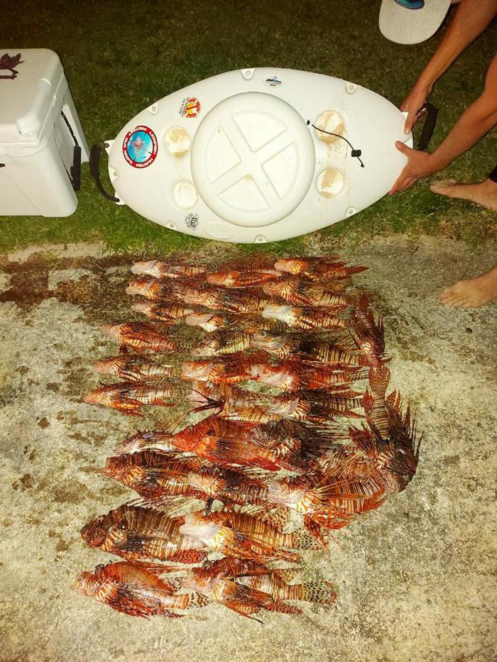 November 2020 Bermuda Lionfish Grand Prix (6)