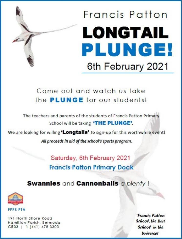 longtail plunge Bermuda Jan 31 2021