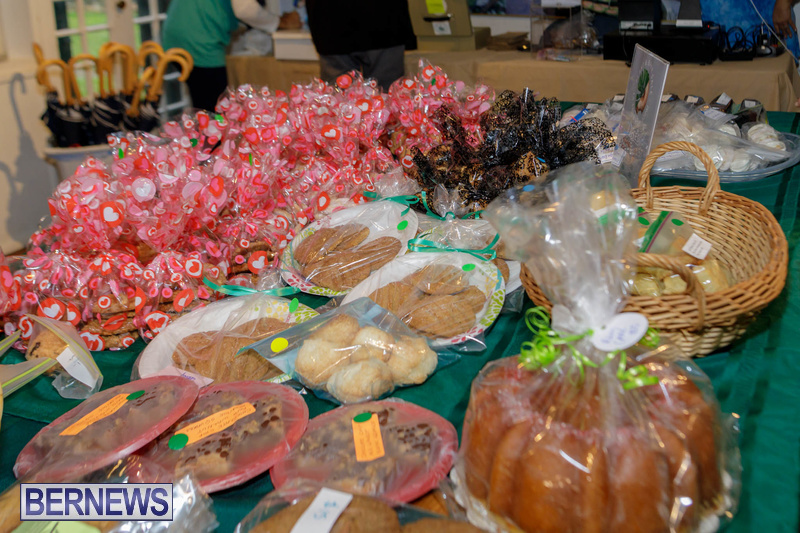 BNT Bermuda National Trust Plant Bake Sale Feb 2020 (2)