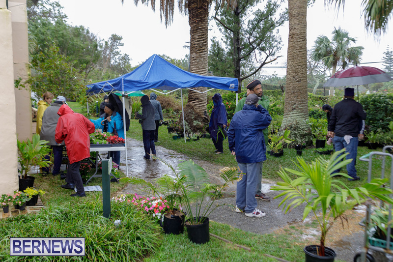 BNT Bermuda National Trust Plant Bake Sale Feb 2020 (8)