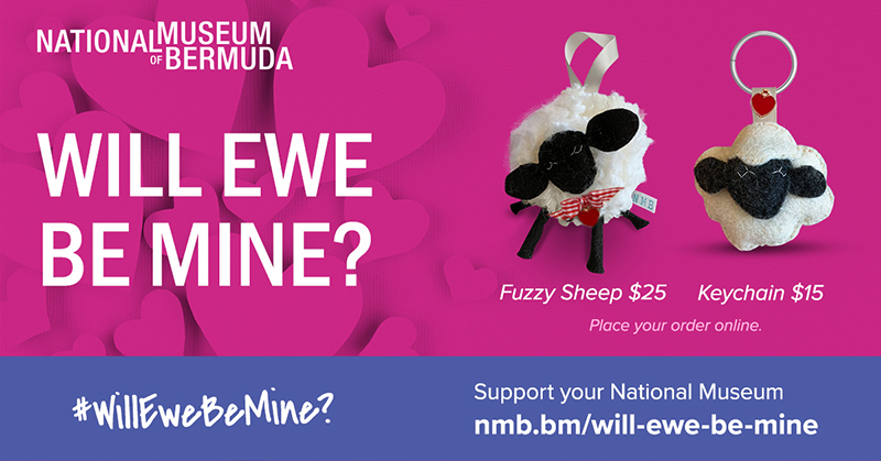 NMB Will EWE Be Mine Bermuda Feb 2021