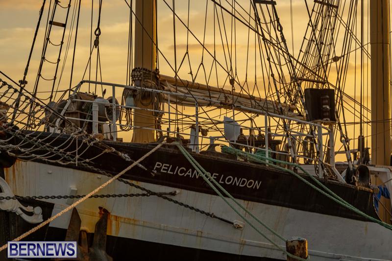 Pelican of London Bermuda Feb 2021 (10)