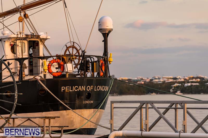 Pelican of London Bermuda Feb 2021 (11)