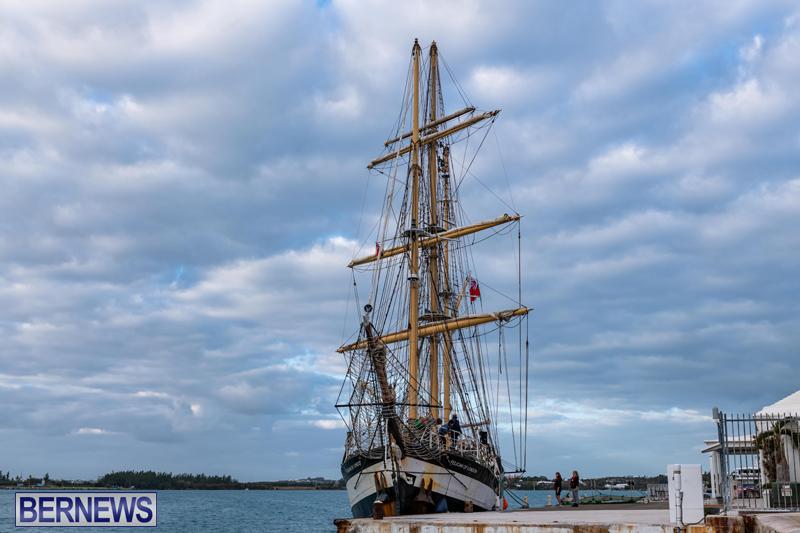 Pelican of London Bermuda Feb 2021 (12)