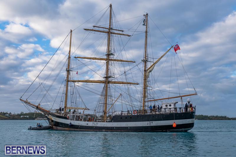 Pelican of London Bermuda Feb 2021 (13)