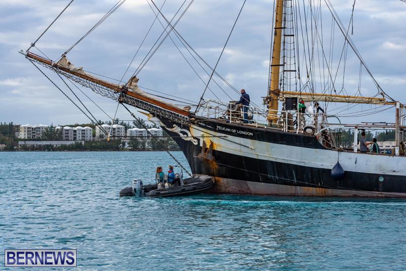 Pelican of London Bermuda Feb 2021 (3)