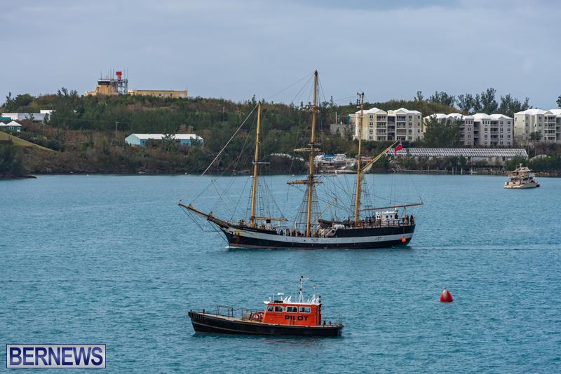 Pelican of London Bermuda Feb 2021 (5)