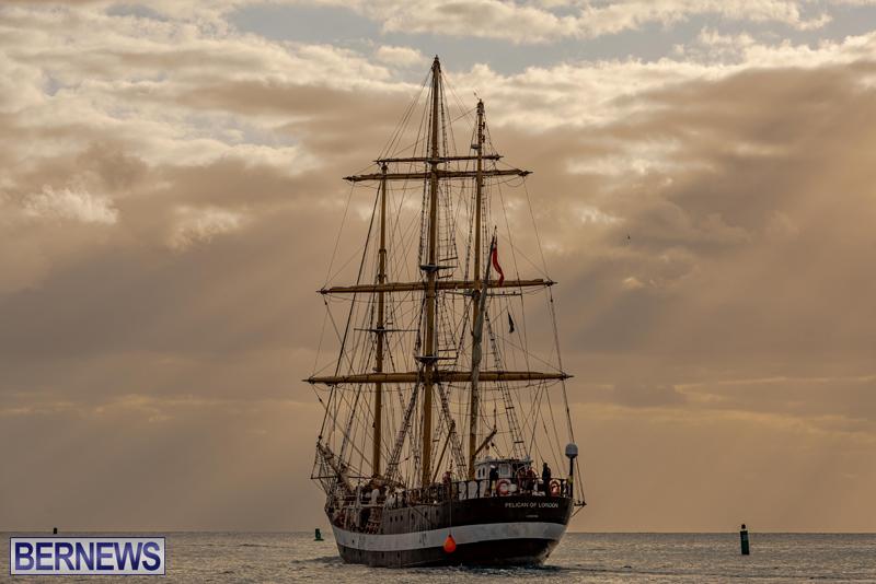 Pelican of London Bermuda Feb 2021 (6)