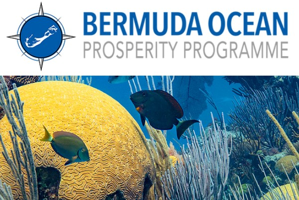 final Bermuda Ocean Prosperity Programme 234883483