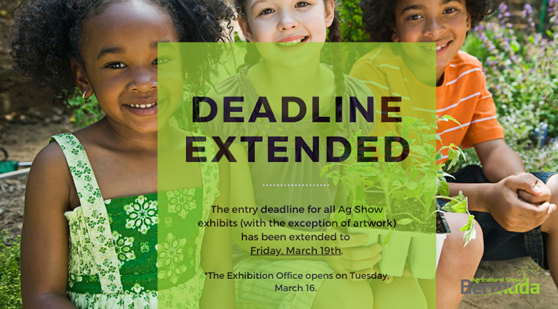 Ag Show Extends Entry Deadline Bermuda March 2021