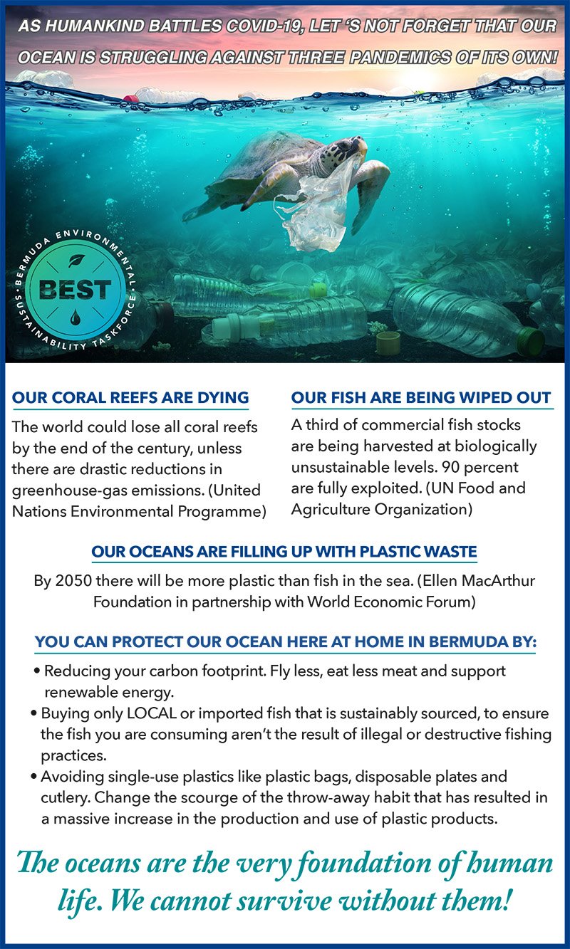Best Urges Community To Protect The Ocean