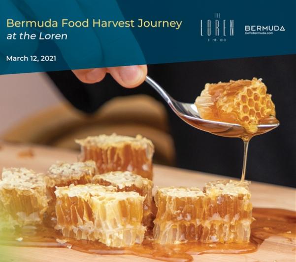 Food Harvest Journey Bermuda March 3 2021 (0)