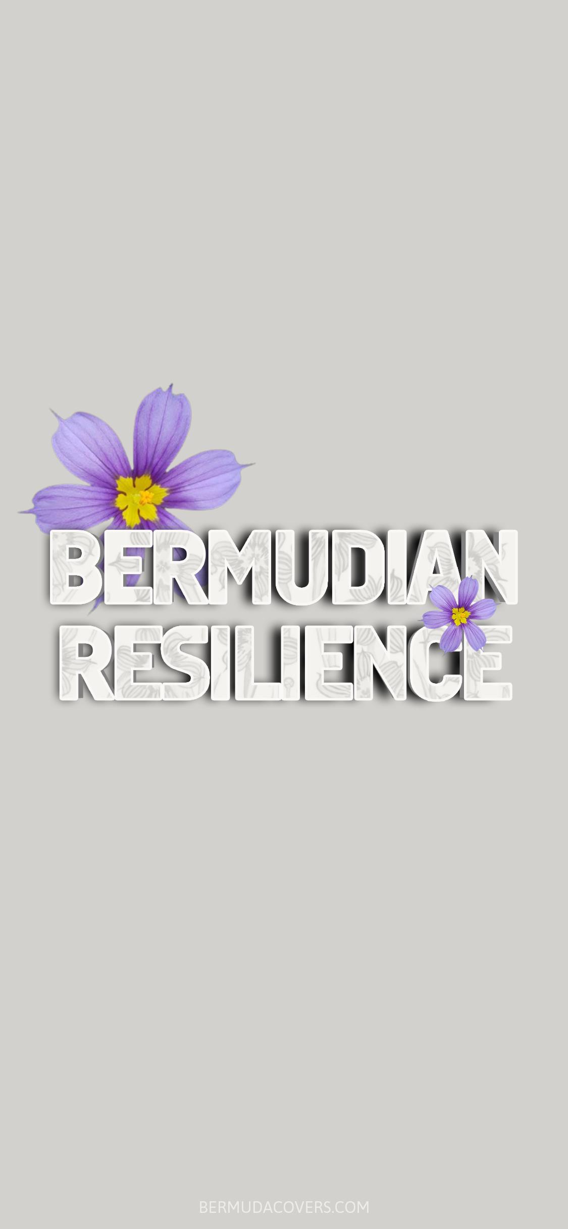 Bermudian-resilience-Bermudiana-Bernews-Mobile-phone-wallpaper-lock-screen-design-image-photo-Ws5VvBua