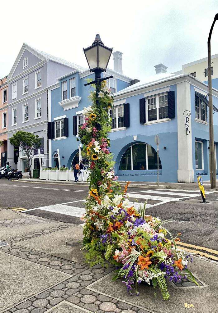 Garden Club of Bermuda Flower Flash May 2021 (4)