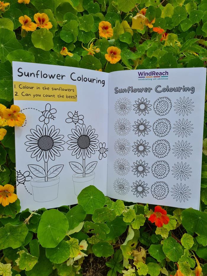 WIndReach Sunflower Project Bermuda May 2021