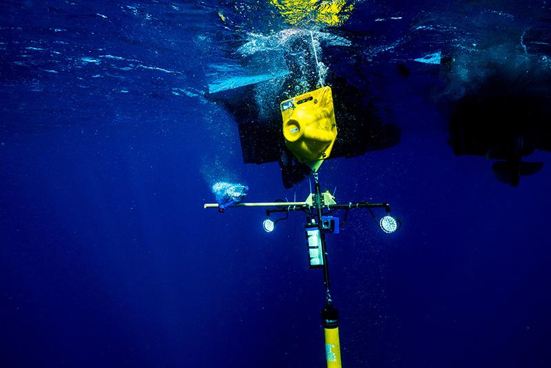 BTW deep sea drop camera Bermuda June 23 2021