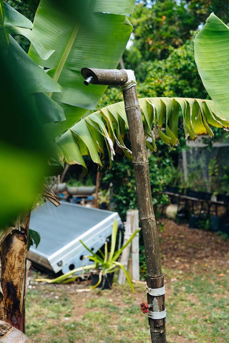 Sustainable Islands Program Bermuda June 2021 7