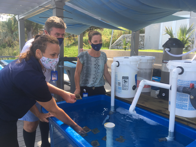 Warwick Academy World Ocean Day Bermuda June 2021 (3)