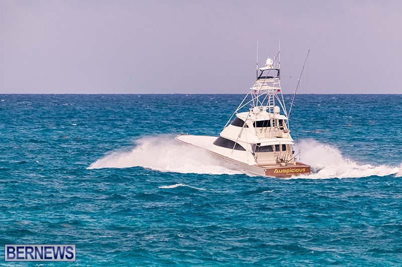 Bermuda Triple Crown Fishing Boats July 2021 22