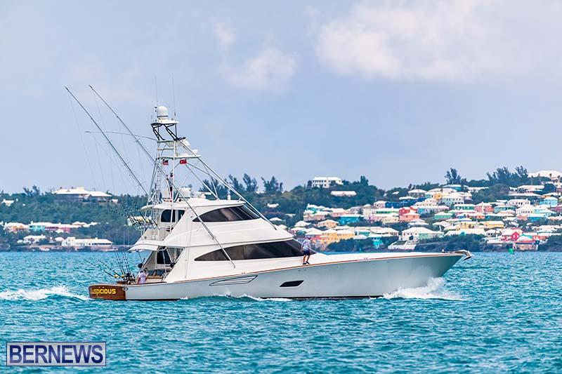 Bermuda Triple Crown Fishing Boats July 2021 66