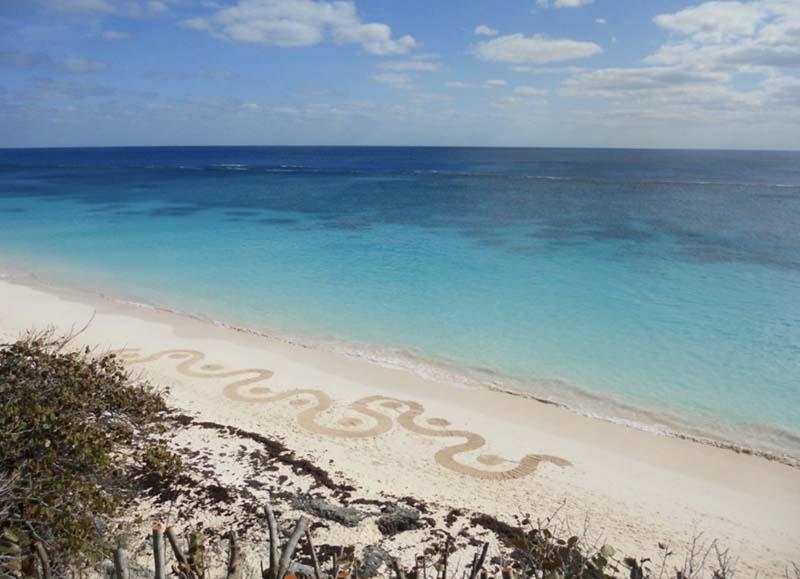 Land Art By Nicky Gurret Bermuda July 2021 2