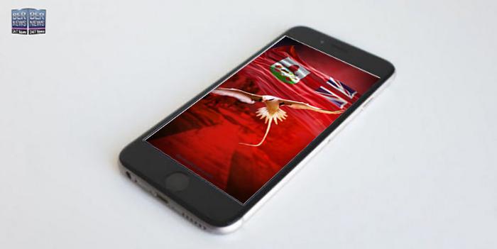 Phone Wallpaper Wednesday TWFB Bermuda Longtail 23040441