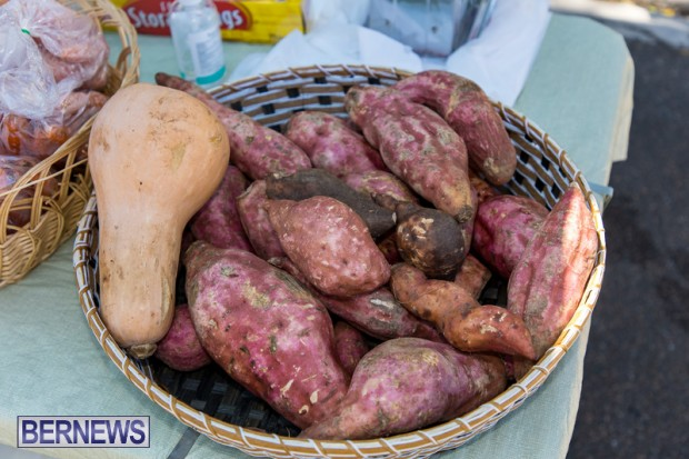 Bermuda Court Street vendors market Hamilton Bermuda Bernews September 5 2021 DF (22)