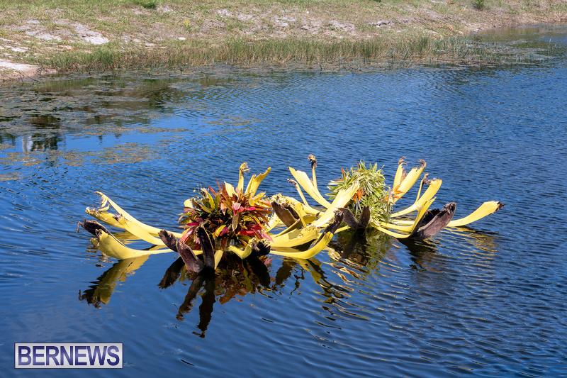 Eves Pond Bermuda sept 2021 flowers Garden Club  (14)