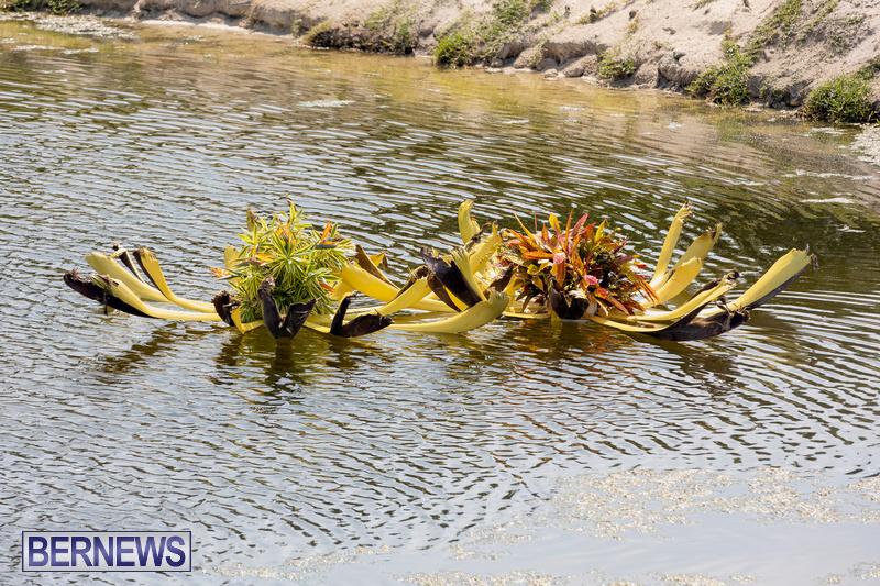 Eves Pond Bermuda sept 2021 flowers Garden Club  (6)