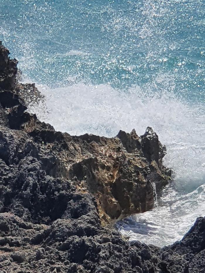Bermuda Society of Arts October 2021 (17)