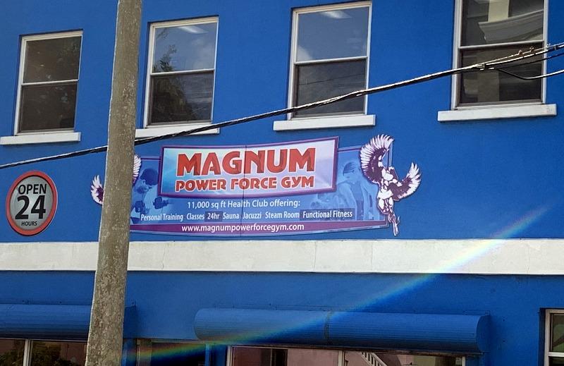 Magnum Power Force Gym Bermuda