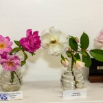 Bermuda Ag Show 2021 DF photos images (115)