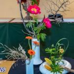 Bermuda Ag Show 2021 DF photos images (15)