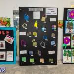 Bermuda Ag Show 2021 DF photos images (66)