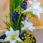 Bermuda Ag Show 2021 DF photos images (7)
