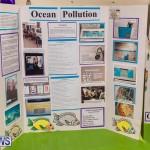 Bermuda Ag Show 2021 DF photos images (72)