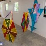 Bermuda Ag Show 2021 DF photos images (83)